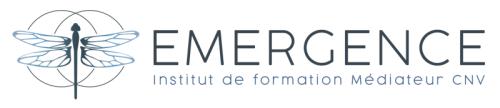 Logo EMERGENCE 080118 - horizontal - S